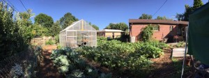 Micro Farms-Lakewood